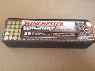 100 ct  Winchester  22 lR bullets