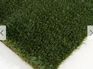 Egegik 69 ounce Artificial Turf   5 x 7 by Havenside Home  Retail 149 99