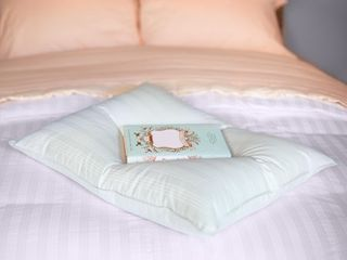 Extra Soft Stomach Sleeper Blue Damask Cotton White Down Pillow  Retail 99 99