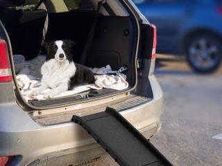 Petmaker Bi fold Pet Ramp  Folding Portable Dog Ramp lightweight With Safe No