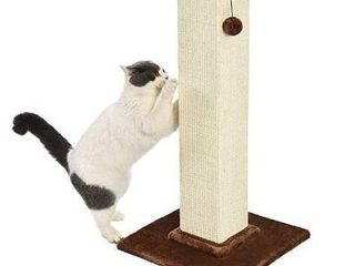 Amazonbasics Premium Cat Scratching Post   large  Wood