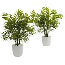 Palms in White Planter Artificial Plant  Set of 2