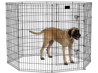 MidWest Exercise Pen with Door  48 Inch  Black
