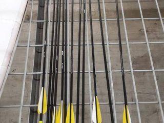 12 Pack 29.5 in Practice Archery Arrows Kit