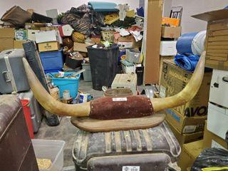 Set of Bull Horns