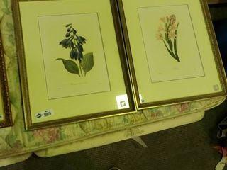 2  Floral Prints  By  Pierre Joseph Redoute