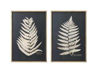 Wood Framed Wall Decor with Fern leaf  Set of 2 Styles    27 5  x 39 25  Retail 255 99