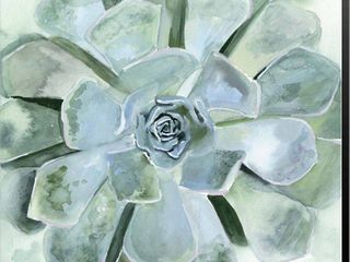 Victoria Borges  Verdant Succulent III  Canvas Art
