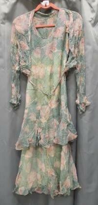 Roaring 20 s Chiffon Dress