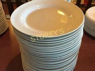 48 Dinner Plates   10 5