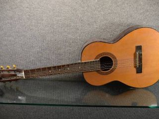 Kingston Acoustic Guitar   Steel Reinforced Neck