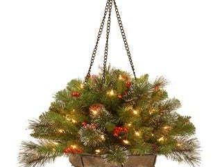 20  Crestwood Spruce Chain Hanging Basket