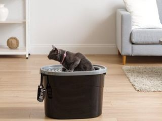 Top Entry Cat litter Box with Scoop