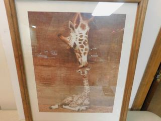 Picture of Giraffe Kissing her Baby