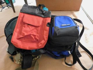 large Assortment of Travel Bags