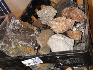 lot of Various Fossils  Minerals and other Rocks