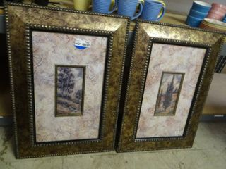 Nature Prints in Ornate Frames