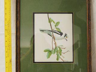 Bird Framed Art Wall Picture   Kingfisher