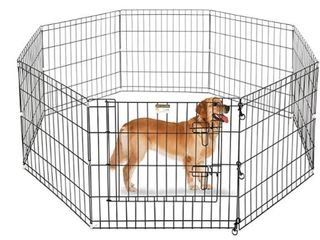 Pet Trex 24  Playpen for Dogs Eight 24  x 24  High Panels