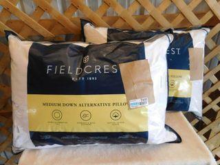 2 Fieldcrest medium down alternative pillow 20inx28in