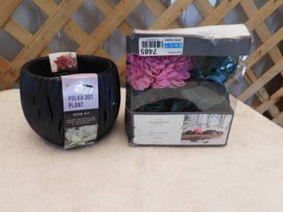 Threshold unscented vase fillers  Buzzy polka dot plant grow kit with crack on side  see pictures
