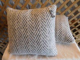 2  Threshold decorative pillows 18inx18in