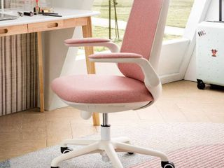 OVIOS Fabric Office Chair for Home Office