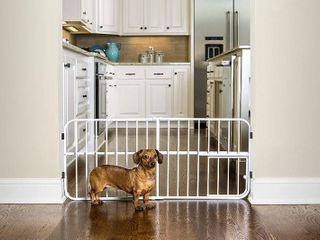 Carlson Pet Products lil  Tuffy Expandable Gate with Small Pet Door  RETAIl  32 25