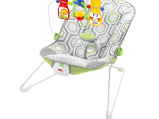 Fisher Price Baby s Bouncer   Geo Meadow  RETAIl  29 99