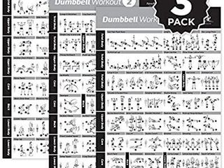 NewMe Fitness Dumbbell Workout Exercise Poster   Now laminated   Strength Training Chart   Build Muscle  Tone   Tighten   Home Gym Weight lifting Routine   Body NewMe Fitness Dumbbell Workout