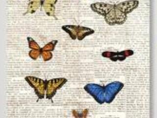 Oliver Gal Butterflies Animal Wall Art