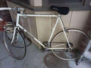 Vintage Bridgestone Racing Bike Series R3 3