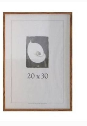 Architect Picture Frame  20  x 30