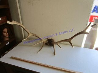 GAME ANTlERS