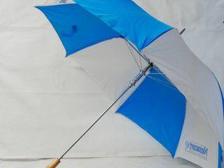Nice Big Blue and White Umbrella