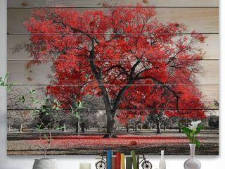 Designart  Big Red Tree on Foggy Day  landscape Print on Natural Pine Wood  Retail 177 49