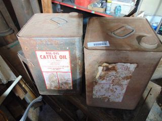 2 Vintage Metal Gallon Cans