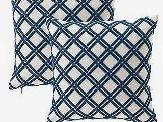Cane Dimensional Embroidered Pillow Cover   Set of 2