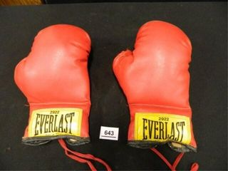 Everlast Boxing Gloves   2292