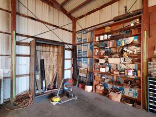 closet  contents of shelf  gas cans  car parts