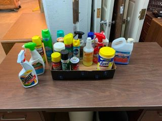 Variety of household cleaners and chemicals