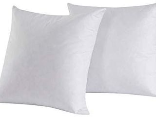 Set of 2  Feather Down Square Decorative Throw Pillow Insert 16x16 Inch