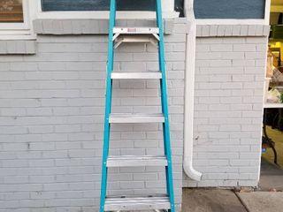 Warner aluminum ladder