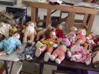 huge doll lot
