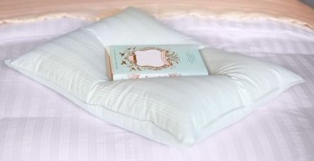 Extra Soft Stomach Sleeper Blue Damask Cotton White Down Pillow 20  x 26  Retail 76 48