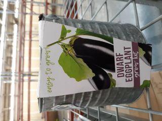 Dwarf Eggplant Grow Kit