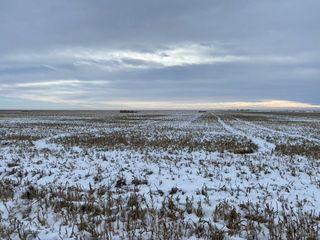 240 AC   Kit Carson County CO  Farm land