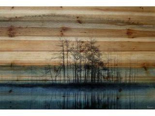 Handmade Parvez Taj   Tree Isle Reflects Print on Natural Pine Wood Retail 469 99