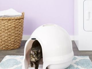 Booda Dome Clean Step Cat litter Box  Pearl