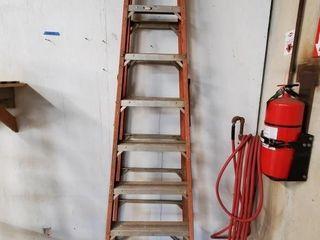Werner 8  step ladder